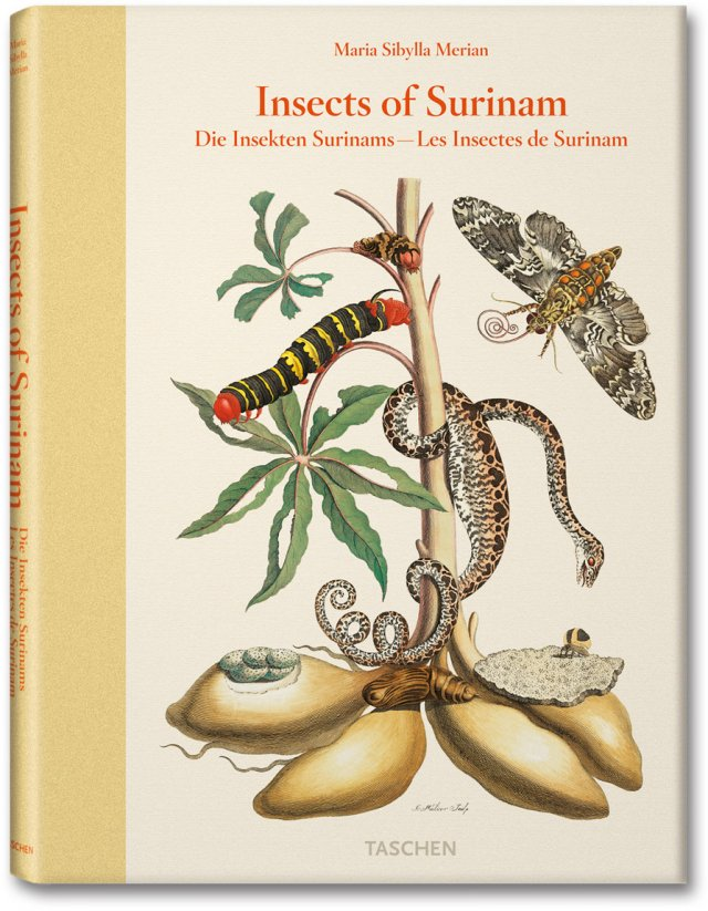 INSECTS OF SURINAM - MARIA SIBYLLA MERIAN