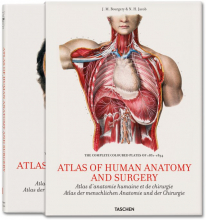 BOURGERY, ATLAS OF HUMAN ANATOMY AND SURGERY I/E/P
