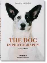 THE DOG IN PHOTOGRAPHY 1839�TODAY