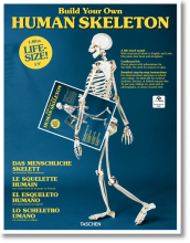 BUILD YOUR OWN HUMAN SKELETON � LIFE SIZE!
