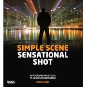 SIMPLE SCENE SENSATIONAL SHOT (I)