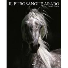 IL PUROSANGUE ARABO (I/GB/E/P) - OUTLET