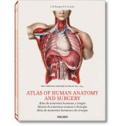 BOURGERY, ATLAS OF HUMAN ANATOMY AND SURGERY (IEP) - Jumbo