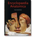 ENCYCLOPAEDIA ANATOMICA (INT)