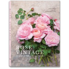 ROSE VINTAGE - OUTLET