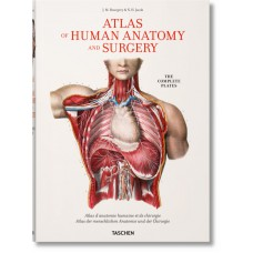 BOURGERY. ATLAS OF HUMAN ANATOMY AND SURGERY (IEP) - OUTLET