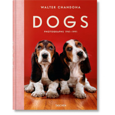 WALTER CHANDOHA. DOGS - OUTLET