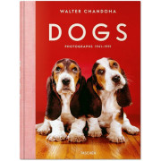 WALTER CHANDOHA. DOGS