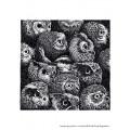 OWLS. FINE ART PRINT