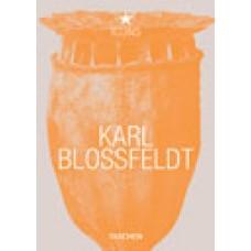 KARL BLOSSFELDT  - OUTLET