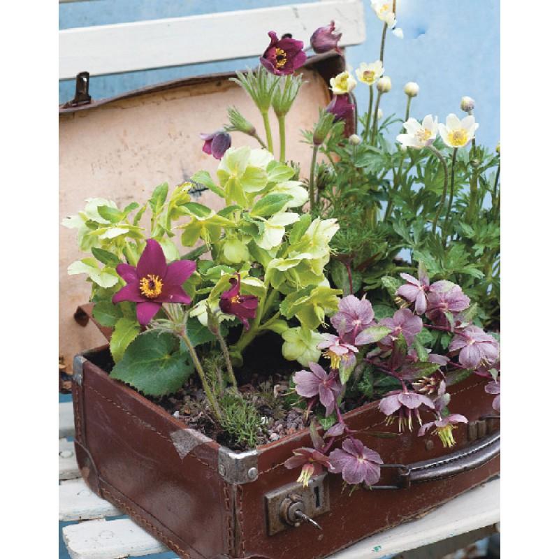 35 piccoli giardini idee e progetti per spazi ridotti - Foto di giardini fioriti ...