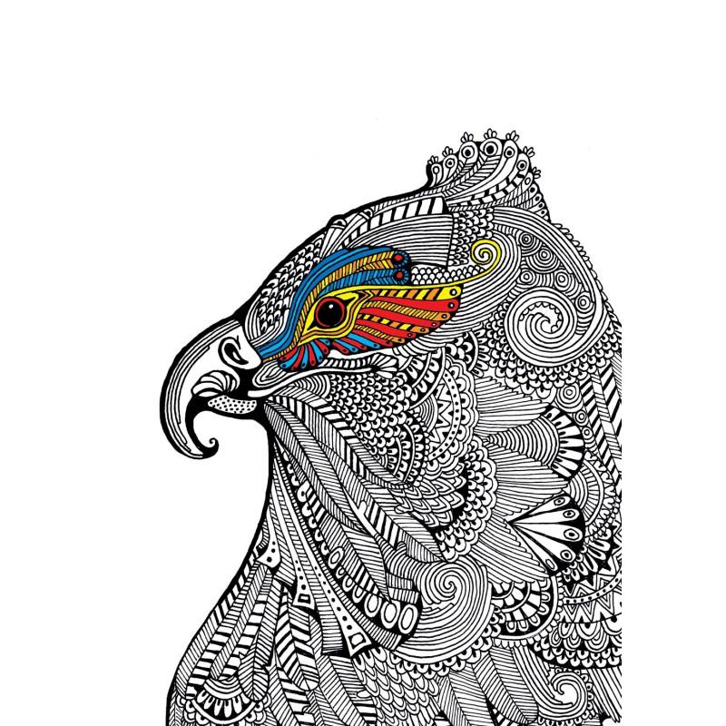 Colorare in 3d animali - Come disegnare un cartone animato di gufo ...