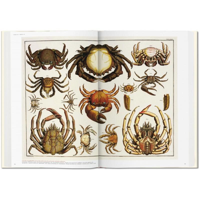 Albertus Seba S Cabinet Of Natural Curiosities Taschen