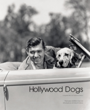 HOLLYWOOD DOGS (I)